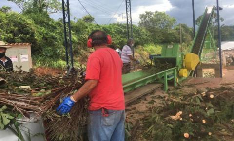 Galhos, troncos e folhas são triturados pela prefeitura