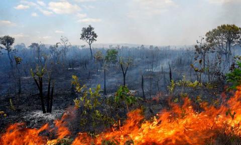 Período prolongado de estiagem desperta atenção para risco de queimadas perto da rede elétrica