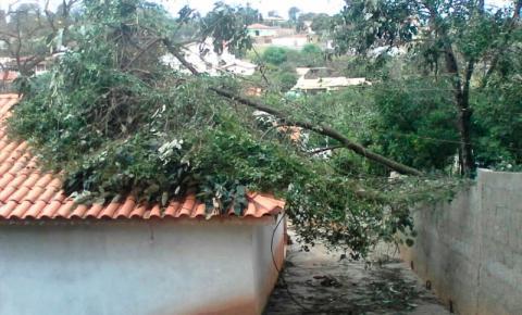 Ventos fortes atingem  Socorro no dia da Padroeira