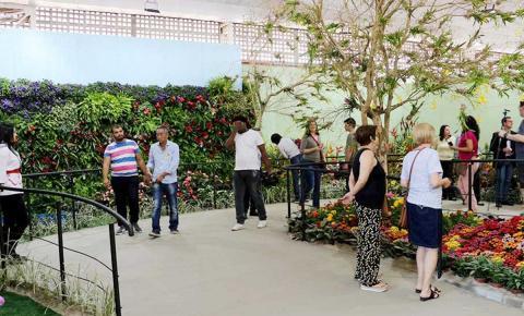 Festa de Flores e Morangos entra na segunda semana